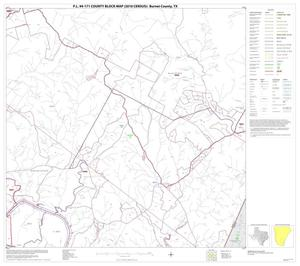 Primary view of object titled 'P.L. 94-171 County Block Map (2010 Census): Burnet County, Block 17'.