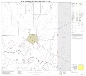 Primary view of object titled 'P.L. 94-171 County Block Map (2010 Census): Coke County, Block 8'.