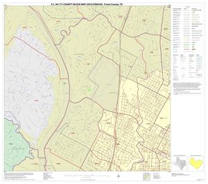 Primary view of object titled 'P.L. 94-171 County Block Map (2010 Census): Travis County, Inset I01'.