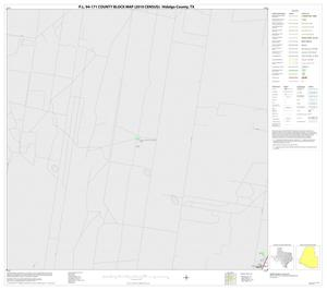 Primary view of object titled 'P.L. 94-171 County Block Map (2010 Census): Hidalgo County, Block 58'.