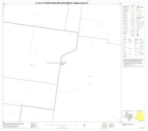 Primary view of object titled 'P.L. 94-171 County Block Map (2010 Census): Hidalgo County, Block 30'.