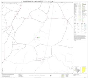 Primary view of object titled 'P.L. 94-171 County Block Map (2010 Census): Culberson County, Block 28'.