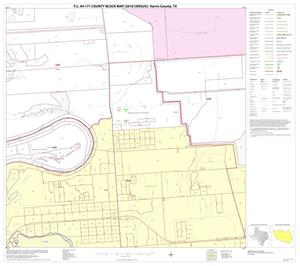 Primary view of object titled 'P.L. 94-171 County Block Map (2010 Census): Harris County, Block 163'.