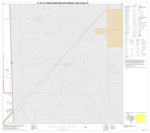 Primary view of object titled 'P.L. 94-171 County Block Map (2010 Census): Collin County, Block 92'.
