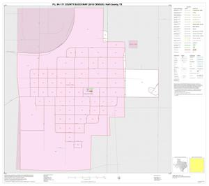 Primary view of object titled 'P.L. 94-171 County Block Map (2010 Census): Hall County, Inset D01'.