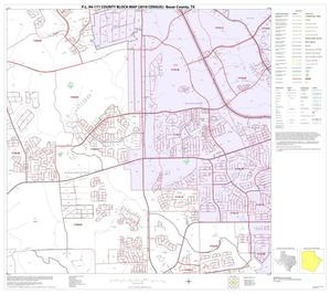 Primary view of object titled 'P.L. 94-171 County Block Map (2010 Census): Bexar County, Block 31'.