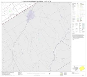 Primary view of object titled 'P.L. 94-171 County Block Map (2010 Census): Falls County, Block 17'.