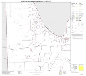 Primary view of object titled 'P.L. 94-171 County Block Map (2010 Census): Grayson County, Block 3'.