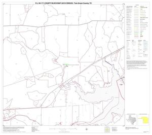 Primary view of object titled 'P.L. 94-171 County Block Map (2010 Census): Tom Green County, Block 15'.