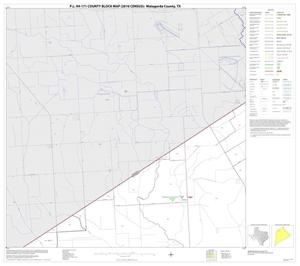 Primary view of object titled 'P.L. 94-171 County Block Map (2010 Census): Matagorda County, Block 3'.