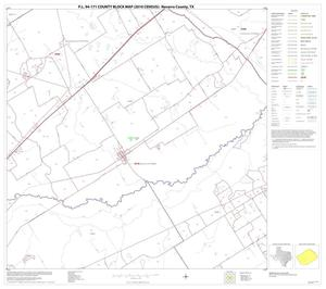 Primary view of object titled 'P.L. 94-171 County Block Map (2010 Census): Navarro County, Block 20'.