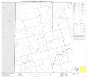 Primary view of object titled 'P.L. 94-171 County Block Map (2010 Census): Fisher County, Block 5'.