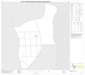 Primary view of object titled 'P.L. 94-171 County Block Map (2010 Census): Marion County, Inset C01'.