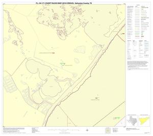 Primary view of object titled 'P.L. 94-171 County Block Map (2010 Census): Galveston County, Block 46'.