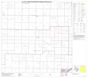 Primary view of object titled 'P.L. 94-171 County Block Map (2010 Census): Hale County, Block 6'.