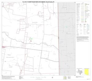 Primary view of object titled 'P.L. 94-171 County Block Map (2010 Census): Duval County, Block 20'.