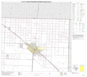 Primary view of object titled 'P.L. 94-171 County Block Map (2010 Census): Bailey County, Block 2'.