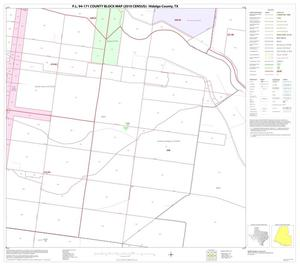 Primary view of object titled 'P.L. 94-171 County Block Map (2010 Census): Hidalgo County, Block 107'.