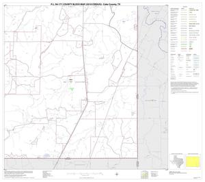 Primary view of object titled 'P.L. 94-171 County Block Map (2010 Census): Coke County, Block 12'.