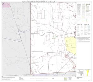 Primary view of object titled 'P.L. 94-171 County Block Map (2010 Census): Newton County, Block 10'.