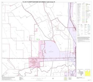 Primary view of object titled 'P.L. 94-171 County Block Map (2010 Census): Cooke County, Block 15'.