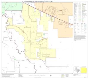 Primary view of object titled 'P.L. 94-171 County Block Map (2010 Census): Collin County, Block 55'.