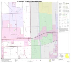 Primary view of object titled 'P.L. 94-171 County Block Map (2010 Census): Hidalgo County, Block 103'.