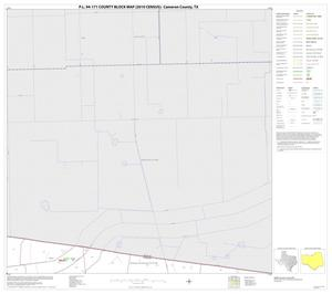 Primary view of object titled 'P.L. 94-171 County Block Map (2010 Census): Cameron County, Block 7'.