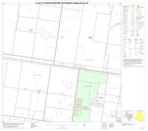 Primary view of object titled 'P.L. 94-171 County Block Map (2010 Census): Hidalgo County, Block 63'.
