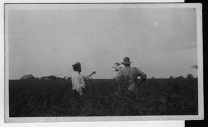 [J.C.Olsen Farm, 1923 with E.L.Stover and R.R.Walker standing in sweet cornfield]