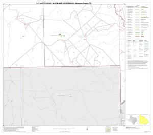 Primary view of object titled 'P.L. 94-171 County Block Map (2010 Census): Atascosa County, Block 28'.