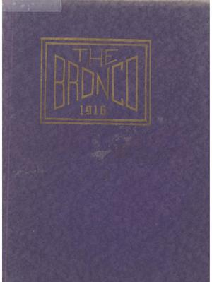 Primary view of object titled 'The Bronco, Yearbook of Simmons College, 1916'.