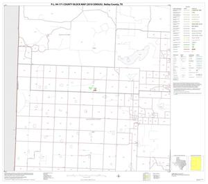Primary view of object titled 'P.L. 94-171 County Block Map (2010 Census): Bailey County, Block 3'.