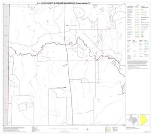 Primary view of object titled 'P.L. 94-171 County Block Map (2010 Census): Brown County, Block 4'.