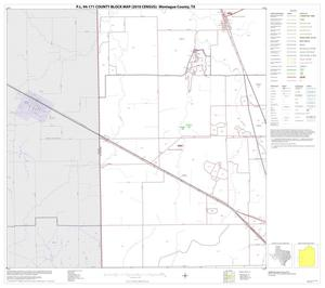 Primary view of object titled 'P.L. 94-171 County Block Map (2010 Census): Montague County, Block 11'.