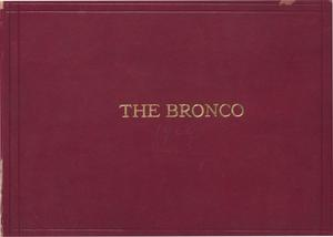 Primary view of object titled 'The Bronco, Yearbook of Simmons College, 1909'.