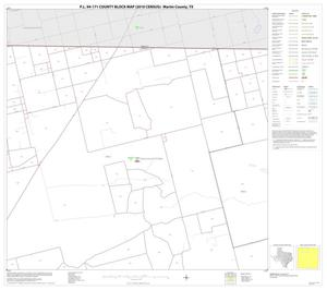 Primary view of object titled 'P.L. 94-171 County Block Map (2010 Census): Martin County, Block 2'.