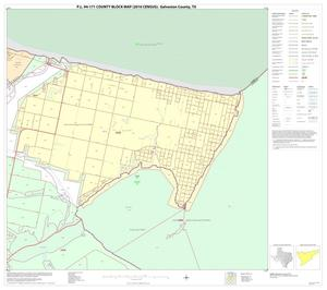 Primary view of object titled 'P.L. 94-171 County Block Map (2010 Census): Galveston County, Block 15'.