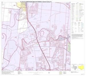 Primary view of object titled 'P.L. 94-171 County Block Map (2010 Census): Cameron County, Block 53'.