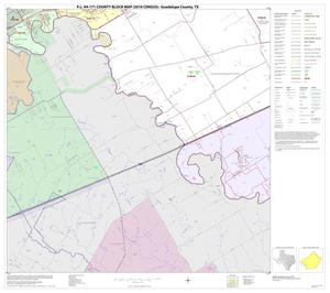 Primary view of object titled 'P.L. 94-171 County Block Map (2010 Census): Guadalupe County, Block 14'.