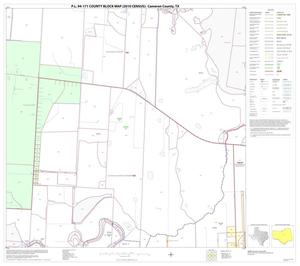 Primary view of object titled 'P.L. 94-171 County Block Map (2010 Census): Cameron County, Block 27'.