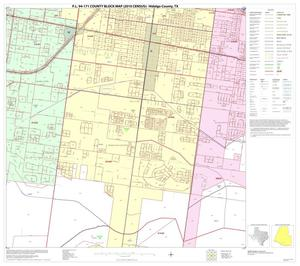Primary view of object titled 'P.L. 94-171 County Block Map (2010 Census): Hidalgo County, Block 98'.