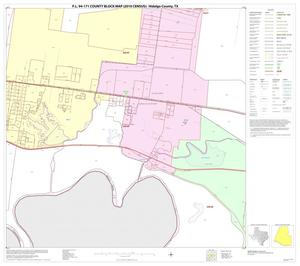 Primary view of object titled 'P.L. 94-171 County Block Map (2010 Census): Hidalgo County, Block 84'.