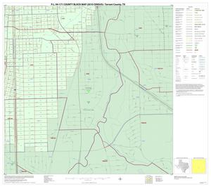 Primary view of object titled 'P.L. 94-171 County Block Map (2010 Census): Tarrant County, Inset G04'.