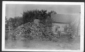 Primary view of object titled '[Man by large woodpile]'.