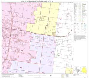Primary view of object titled 'P.L. 94-171 County Block Map (2010 Census): Hidalgo County, Block 77'.