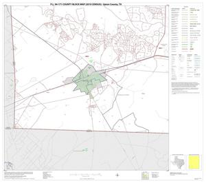 Primary view of object titled 'P.L. 94-171 County Block Map (2010 Census): Upton County, Block 10'.