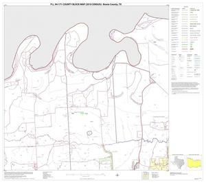 Primary view of object titled 'P.L. 94-171 County Block Map (2010 Census): Bowie County, Block 7'.
