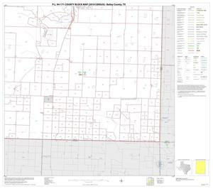 Primary view of object titled 'P.L. 94-171 County Block Map (2010 Census): Bailey County, Block 6'.