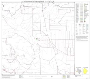 Primary view of object titled 'P.L. 94-171 County Block Map (2010 Census): Brewster County, Block 66'.